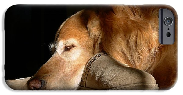 Purebred iPhone Cases - Golden Retriever Dog with Masters Slipper iPhone Case by Jennie Marie Schell