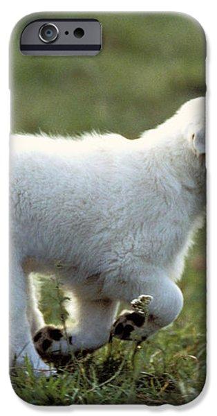 Golden Retriever Puppy iPhone Case by Jean-Michel Labat