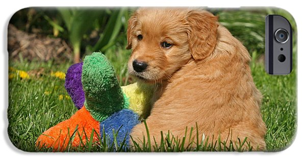Dog Photos iPhone Cases - Golden Retriever puppy with colorful dog toy iPhone Case by Dog Photos