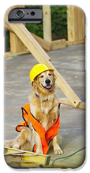Construction Frame iPhone Cases - Golden Retriever Supervising iPhone Case by Ron Dahlquist