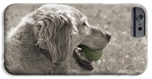 Dog And Tennis Ball iPhone Cases - Golden Retriever with Ball Monochrome iPhone Case by Jennie Marie Schell