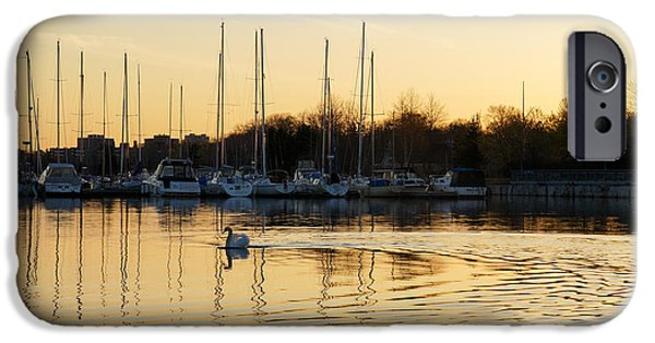 Swans... iPhone Cases - Golden Ripples and Reflections iPhone Case by Georgia Mizuleva