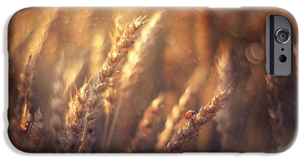 Creative Photographs iPhone Cases - Golden Summer iPhone Case by Magda  Bognar