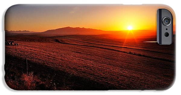 Hay Bales iPhone Cases - Golden Sunrise over Farmland iPhone Case by Johan Swanepoel