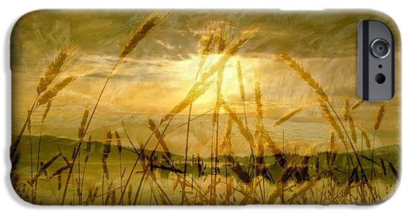 West Fork iPhone Cases - Golden Sunset iPhone Case by Barbara St Jean