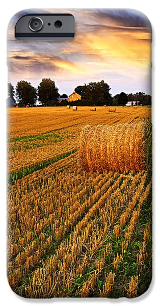Agriculture iPhone Cases - Golden sunset over farm field with hay bales iPhone Case by Elena Elisseeva