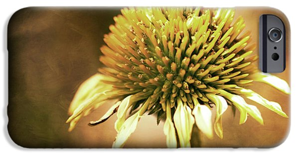 Cone Flowers iPhone Cases - Golden iPhone Case by Sylvia Cook