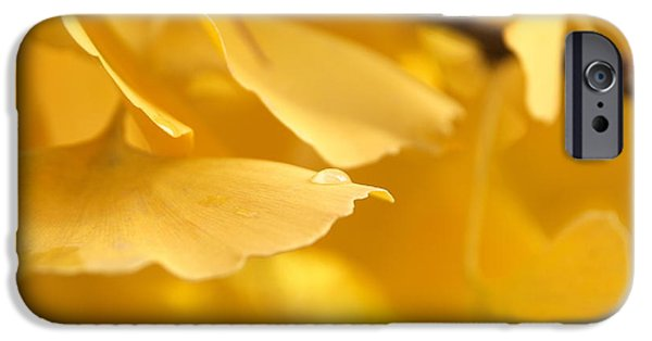 Torn iPhone Cases - Golden tear iPhone Case by Stefano Venturi