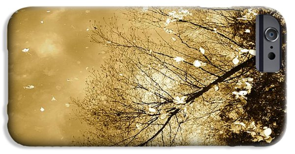 Charles River iPhone Cases - Golden Tones iPhone Case by Corinne Rhode