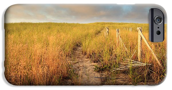 Cape Cod iPhone Cases - Golden Trail iPhone Case by Bill  Wakeley