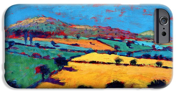Rural iPhone Cases - Golden Valley Acrylic On Card iPhone Case by Paul Powis