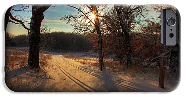 Winter Morning iPhone Cases - Golden Winter Morning iPhone Case by Wayne Moran