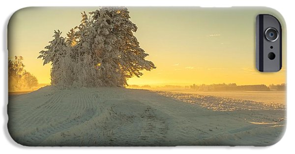Landscape In Norway iPhone Cases - Golden Winter iPhone Case by Rose-Maries Pictures