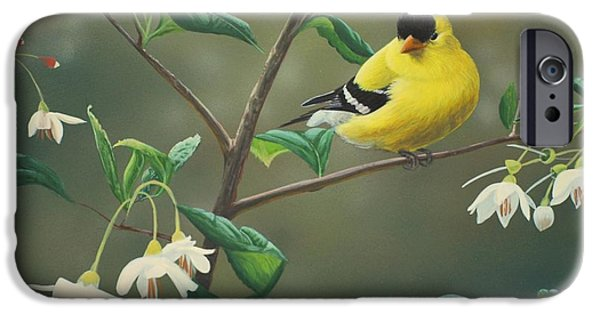 Birds iPhone Cases - Goldfinch and Snowbells iPhone Case by Peter Mathios