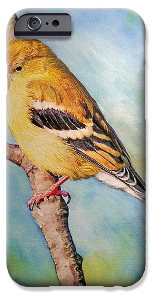 Affordable iPhone Cases - Goldfinch Female iPhone Case by Ken Everett