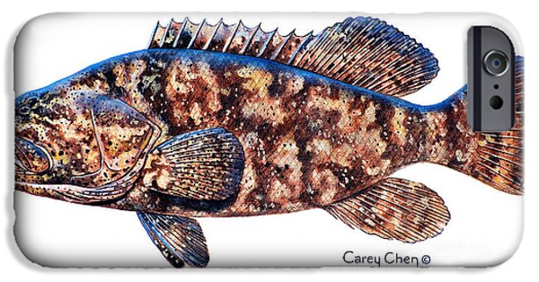 Islamorada iPhone Cases - Goliath Grouper iPhone Case by Carey Chen