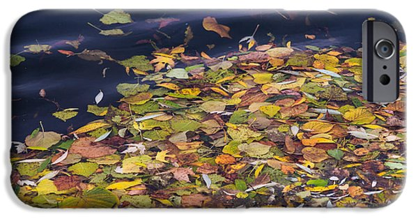 Effervescence iPhone Cases - Gone With The Water iPhone Case by Alexander Senin