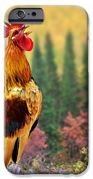 Good Morning America iPhone Case by Christine Till