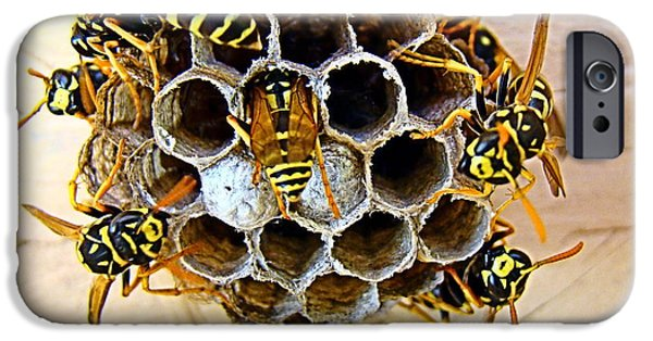 Hornets Nest iPhone Cases - Good Parents iPhone Case by Nick Kloepping