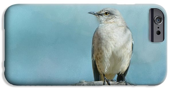 Mockingbird iPhone Cases - Good Winter Morning iPhone Case by Jai Johnson