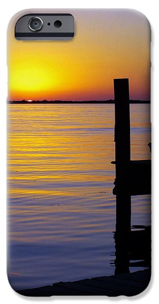 GOODNIGHT SUN iPhone Case by KAREN WILES
