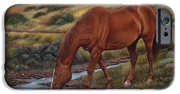 Quarter Horses iPhone Cases - GoodOl Red iPhone Case by Ricardo Chavez-Mendez