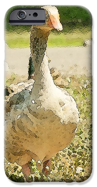 Goose Goose iPhone Case by Artist and Photographer Laura Wrede