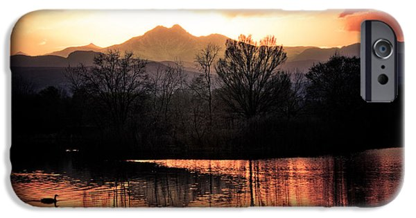 Stock Images iPhone Cases - Goose On Golden Ponds 1 iPhone Case by James BO  Insogna