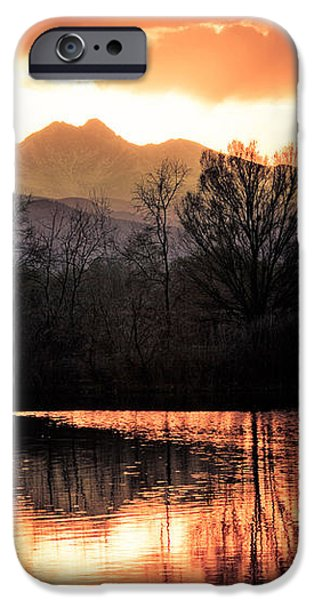 Goose On Golden Ponds 1 iPhone Case by James BO  Insogna