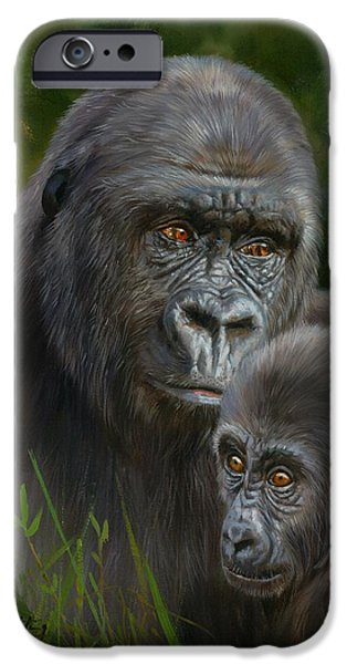 Ape iPhone Cases - Gorilla and Baby iPhone Case by David Stribbling