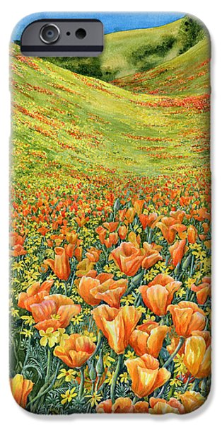 California Poppies iPhone Cases - Gorman iPhone Case by Karen Wright