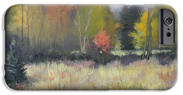 Nature Center Paintings iPhone Cases - Gorman Prairie iPhone Case by Judy Fischer Walton