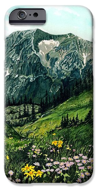 Biological Paintings iPhone Cases - Gothic Grandeur iPhone Case by Barbara Jewell