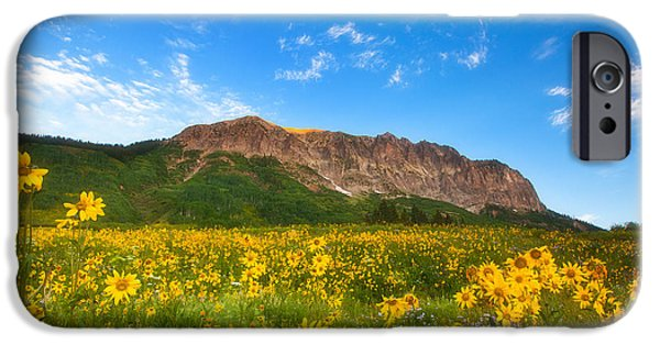 Scenic Print Photographs iPhone Cases - Gothic Meadow iPhone Case by Darren  White
