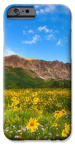 Gothic Meadow iPhone Case by Darren  White