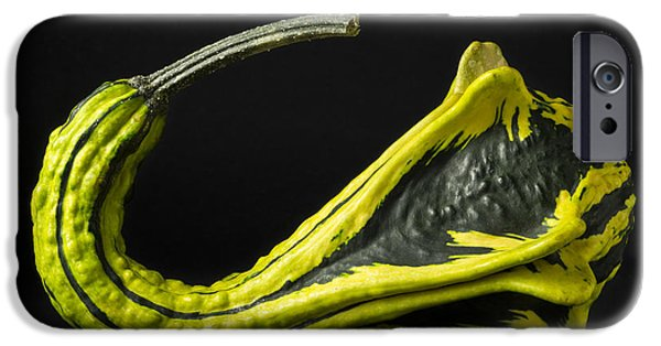 Agriculture iPhone Cases - Gourd Green Yellow 4 A iPhone Case by John Brueske