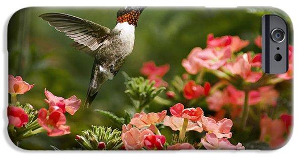 Hummingbird iPhone Cases - Graceful Garden Jewel iPhone Case by Christina Rollo