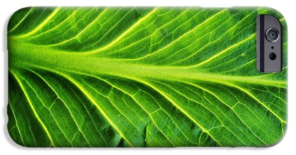 Nature Abstract Tapestries - Textiles iPhone Cases - Graceful iPhone Case by Tom Druin