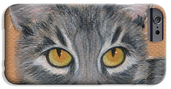 Beautiful Cat Drawings iPhone Cases - Gracie iPhone Case by Jamie Frier
