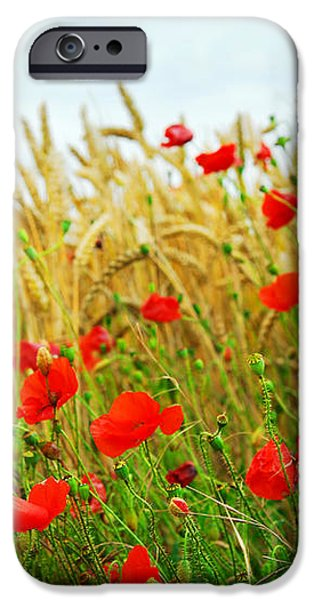 Grain and poppy field iPhone Case by Elena Elisseeva