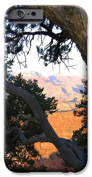 Grand Canyon iPhone Cases - Grand Canyon 74 iPhone Case by Will Borden