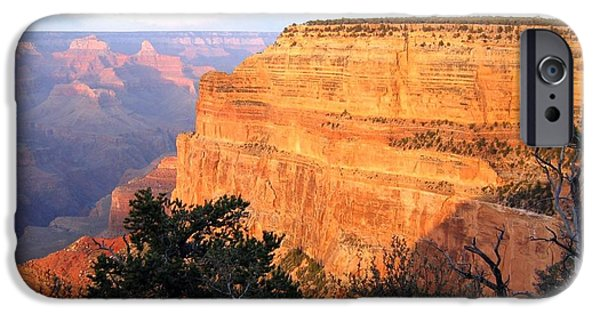 Grand Canyon iPhone Cases - Grand Canyon 76 iPhone Case by Will Borden