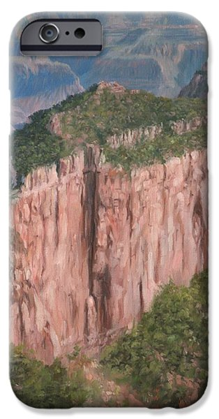 Colorado River iPhone Cases - Grand Canyon North Rim iPhone Case by David Stribbling