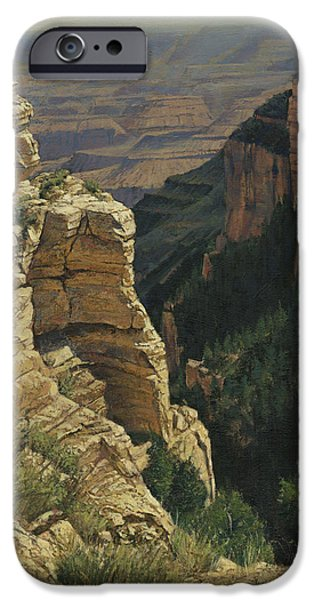 Grand Canyon iPhone Cases - Arizona View From the Top iPhone Case by Don  Langeneckert