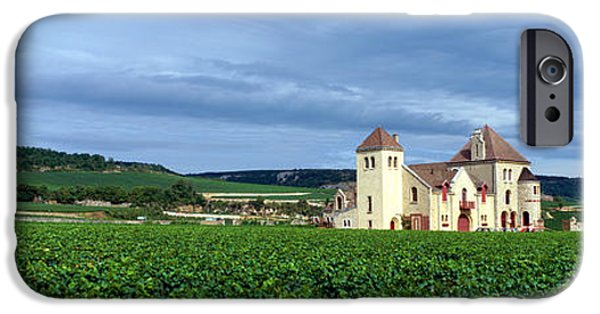 Grapevines iPhone Cases - Grand Cru Vineyard, Burgundy, France iPhone Case by Panoramic Images