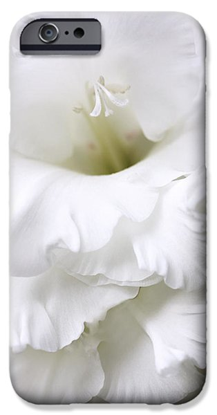 Gladiolas iPhone Cases - Grandiose White Gladiola Flower iPhone Case by Jennie Marie Schell