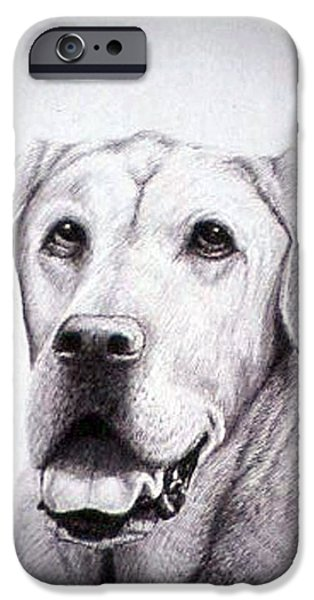 Chocolate Lab iPhone Cases - Grant iPhone Case by Rick Hansen