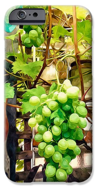 Garden Scene Paintings iPhone Cases - Grapes and wooden fence iPhone Case by Lanjee Chee