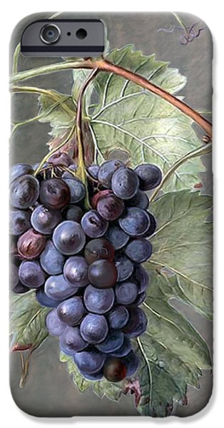 Blue Grapes iPhone Cases - Grapes iPhone Case by Enzie Shahmiri