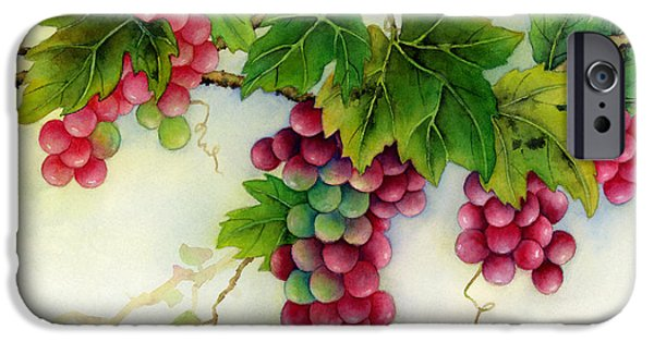 Harvest Time iPhone Cases - Grapes iPhone Case by Hailey E Herrera